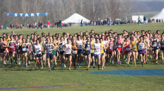 Distance runners, are you really ready?